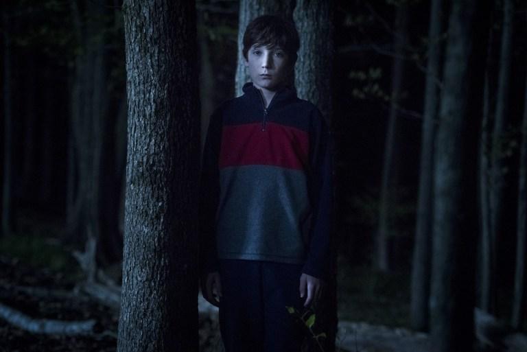 Un inofensivo niño que está paseando por el bosque, el hijo