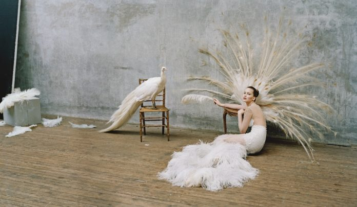 ave del paraiso