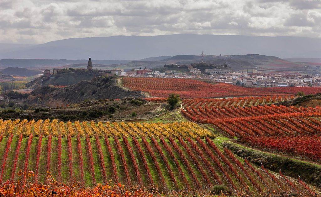 Viñedos en la Rioja, simulan donde se ubica Las Urracas en Las hijas de la tierra