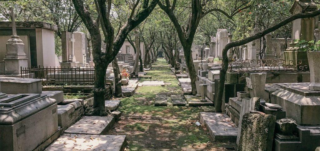 En un cementerio es donde se desarrolla El secreto de las flores