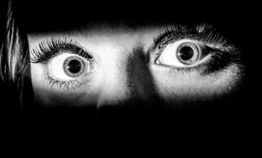 Foto para la portada de la reseña del libro En sus ojos habitaba el miedo de Ana Isabel Fernández