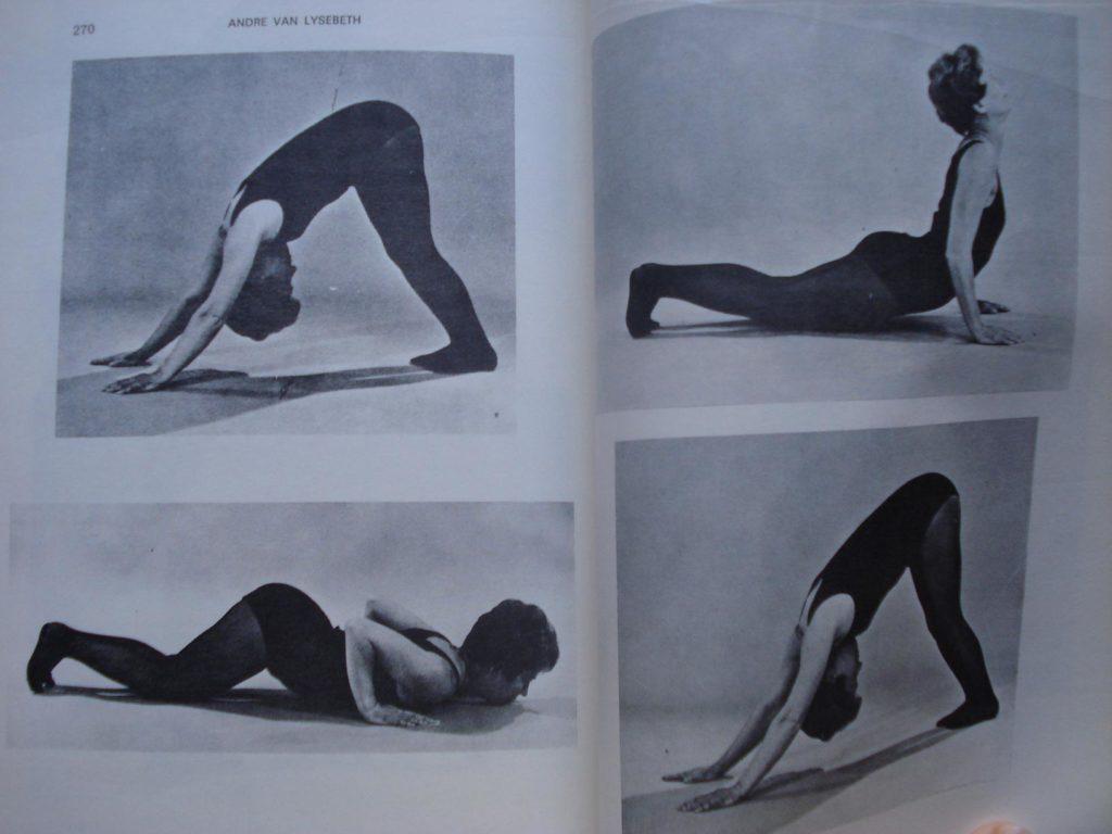 Aprendo Yoga, de André Van Lysebeth