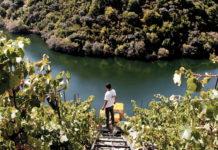 Senderismo por viñedos de la Ribeira Sacra