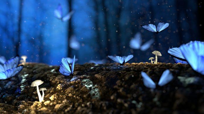 Reseña de La habitación de las mariposas de Lucinda Riley