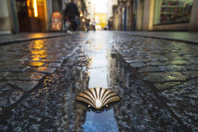literatura peregrina