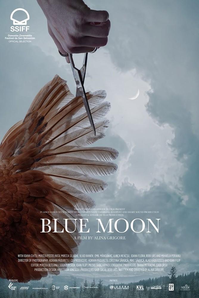 Cartel de Crai Nou / Blue Moon, Concha de Oro en un controvertido palmarés del 69 SSIFF